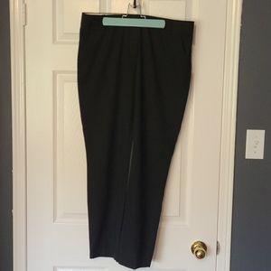 Blank dress pants